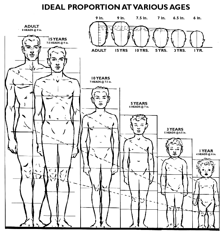 proportions